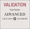 validation Advanced